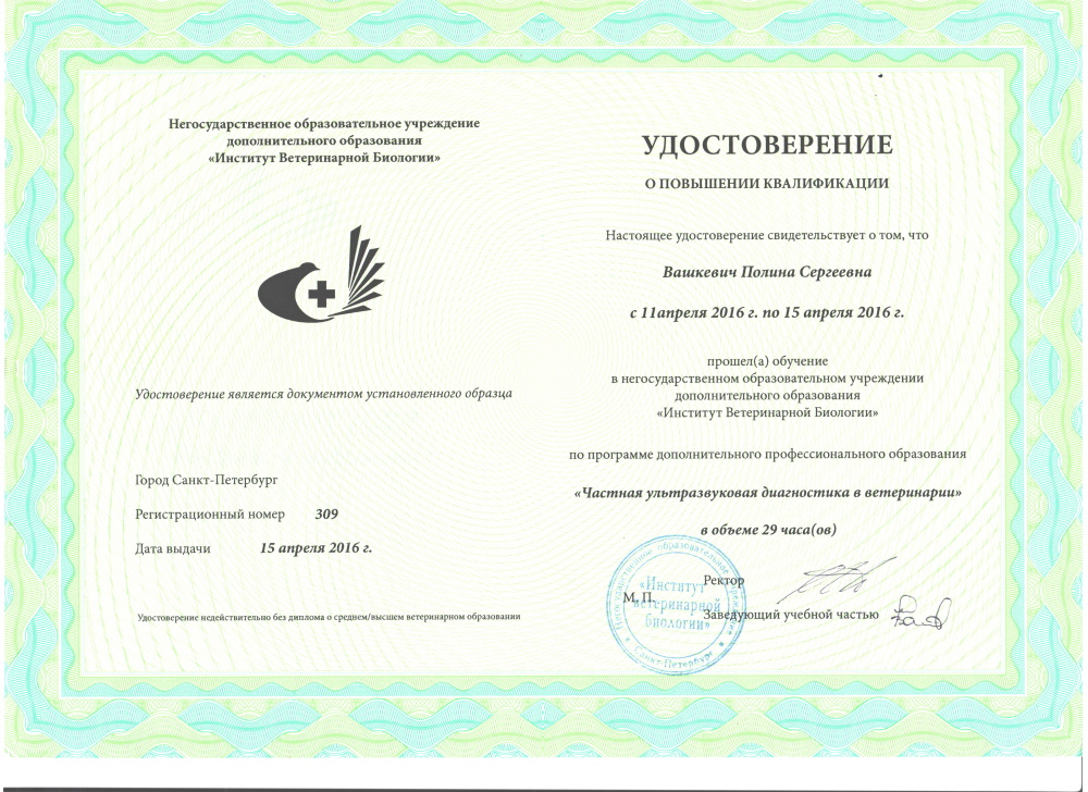 Vashkevich-8,horiz
