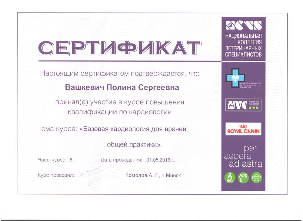 Vashkevich-11,horiz