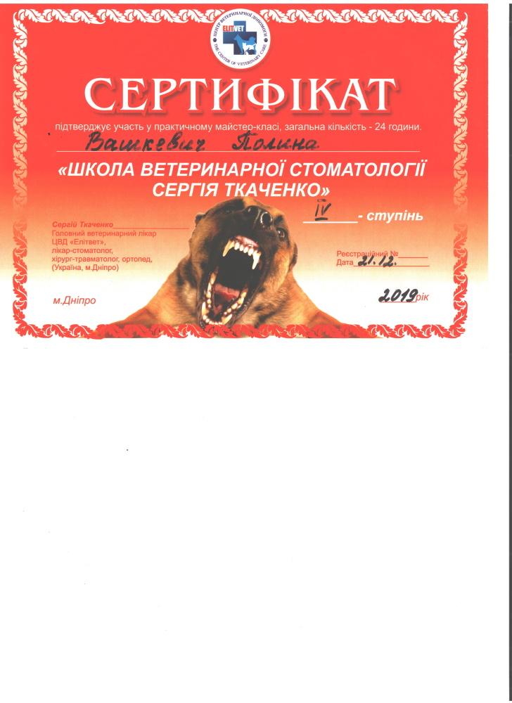 Vashkevich-2